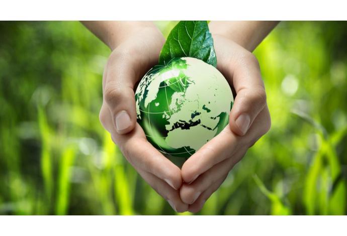 Actualités, micro station d'épuration écologique
